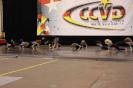 Deutsche Meisterschaft CCVD - Erfurt 12. Mai 2012_43