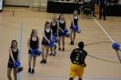 Basketball Bernau 31.01.2016_17