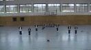 20160430_Handball