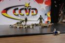 CCVD Regio-Bonn 01.04.2017